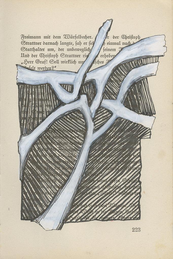 Buchscan-Seite-223.jpg